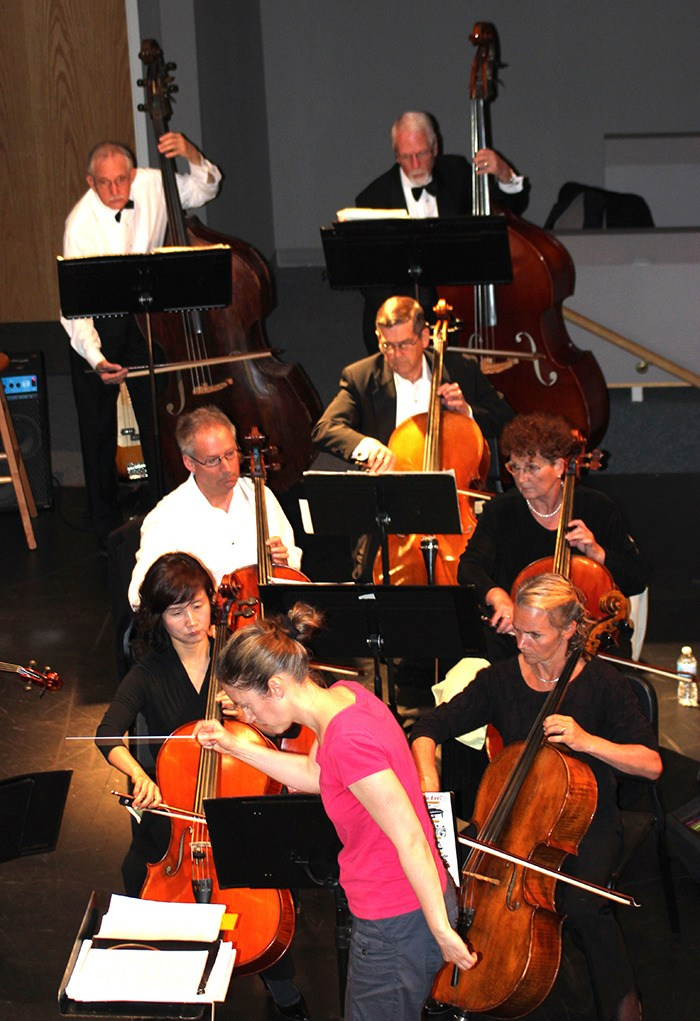 Fraser Valley Symphony is looking to bolster its ranks with new advanced violin and viola players.