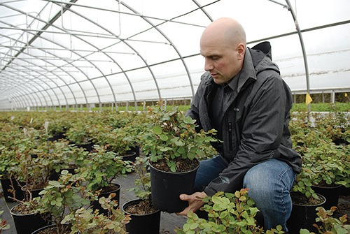 Dave Van Belle, president of Van Belle Nursery in Abbotsford, is concerned by the province's new recycling program.  The new producer-pay system, set to launch on May 19,  will mean an additional charge on every plant pot at the nursery.