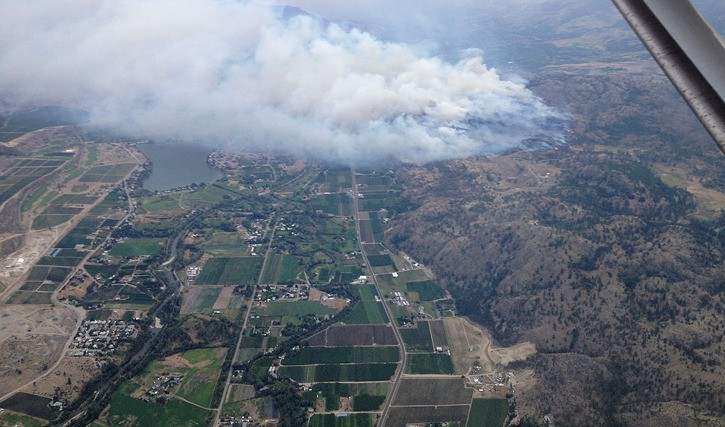 Wilson's Mountain Road fire threatens farms and homes in Oliver, August 2015.