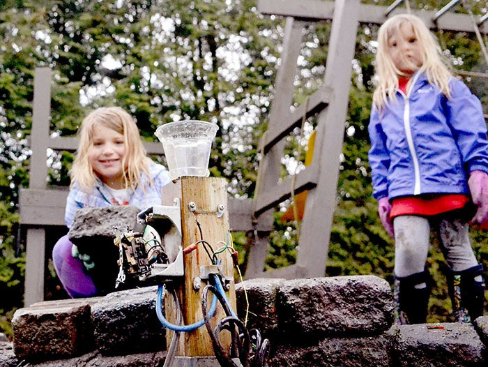 Wednesday night's lightning storm destroyed a transformer on Jurgen and Dale Peter's property in Brookswood. Neighbours, including eight-year-old Brailea Boice and her four-year-old sister, Aubrey, came over Thursday morning to help with clean-up. The strike also damaged a fir tree (below) and smashed a brick wall on the property.