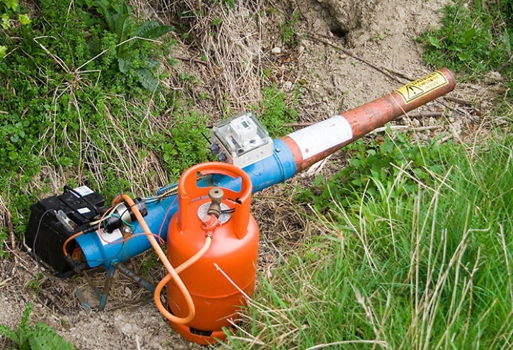 Complaints about propane cannons used by blueberry farmers have dropped significantly since a bylaw restricting them was enacted in 2013