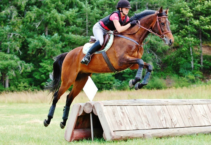 Sarah Clark of Vancouver Island rides Willie Katchem. Clark adopted Willie from Langley-based New Stride and is now competing in three-day eventing competitions across the province.