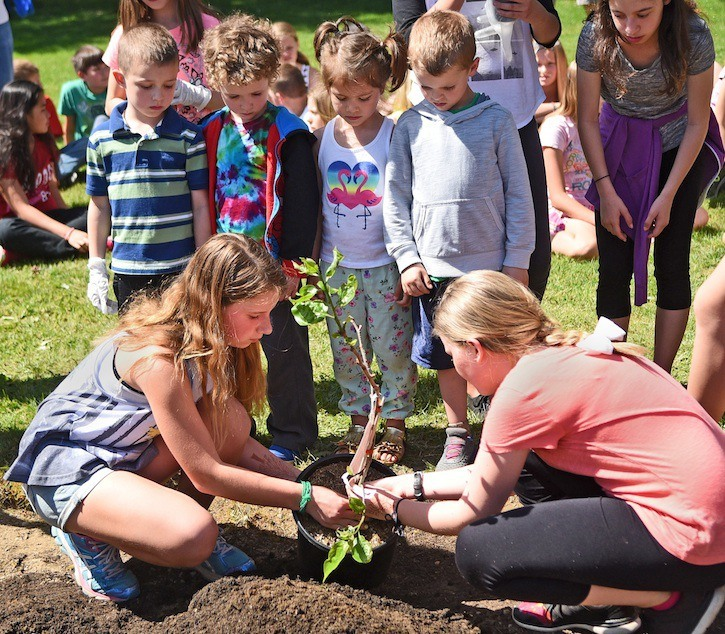 Dorothy Peacock Elementary school is planting and growing a community orchard with apples, figs, cherries and more that can be harvested both by students and the community. Front row – Grade 7 students Paige & Jessicah Back row: Kindergarten students Dylan, Isaiah, Peyton, Maximus & Brianna