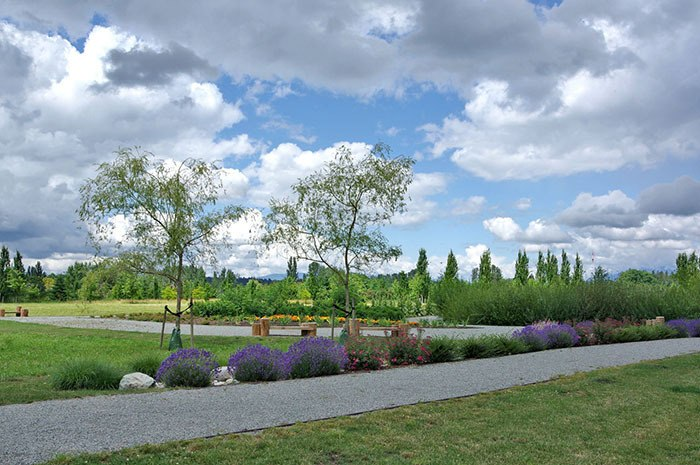 The Derek Doubleday Arbouretum on Fraser Highway between 208 and 216 Streets offers a number of lovely walking paths and benches perfect for quiet reflection, as this photo submitted by reader Greg Holmes shows.