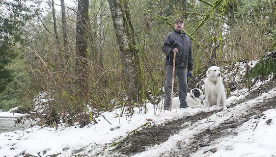 James Moran stands next to a gouged-out trail in Williams Park damaged by ATVs.