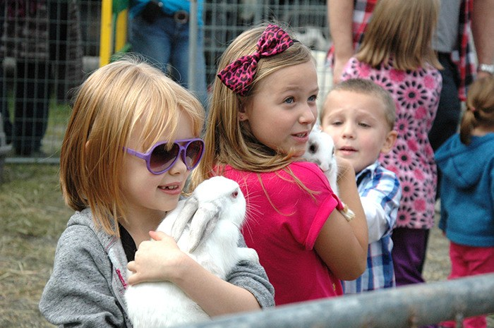 Hana Ireland and Annabelle Bona, both seven, make new friends at the petting zoo during Saturday's Langley Meadows Fall Community Fair
