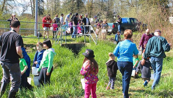 Kids make a splash at Yorkson Creek salmon release