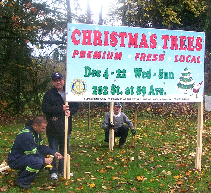 Christmas Trees For Sale.Christmas Trees For A Cause Langley Advance Times