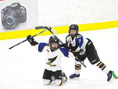Langley Blackhawks' Scott Farynuk (left) celebrates his goal with teammate Jesse Hagen during a Langley Cup peewee game on Sunday at Twin Rinks. The Langley Cup runs all week with the championship finals scheduled for Sunday at the George Preston Recreation Centre.