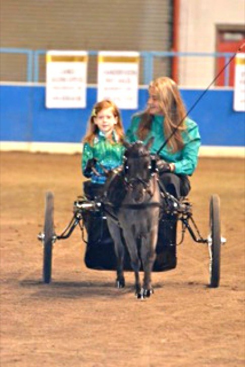 Kate Gillie and her six-year-old daughter Sydney drive their mini horse Max.