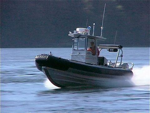 Fishery officers can catch and fine violators, but significant numbers of offenders don't pay and DFO has made no serious effort to force them to cough up the cash.