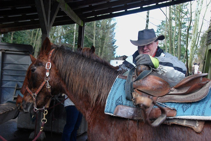 Back in the Saddle Again's owner and operator Darcy Campbell grooms one of the business' more than 30 horses. Back in the Saddle offers guided horse rides through Campbell Valley Park.