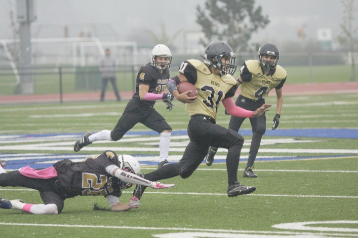 North Langley Bears' Pablo ww gets away from a fallen Victoria Spartan defender during bantam football at McLeod Athletic Park on Sunday.