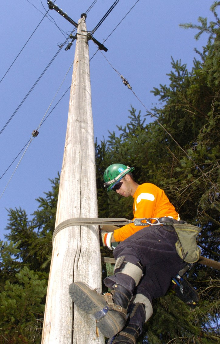 a Telus lineman carries out repairs after thieves cut off power and the lights for customers while attempting to steal wire.