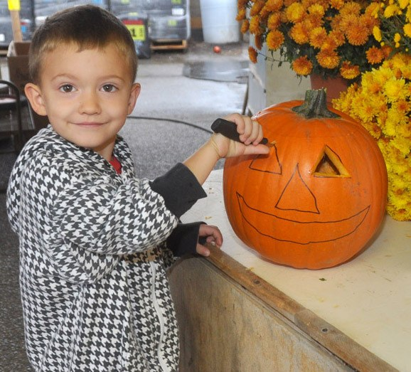 Three-year-old Myles Hiebbert tries his hand at jack-o-lantern carving for the upcoming Wall-O-Lantern event in Aldergrove Oct. 22. Hundreds of jack-o-lanterns will be carved by children that day at All Seasons Garden Centre, to create a wall of scary pumpkins. The event is a benefit for Big Brothers Big Sisters of Langley and Abbotsford.