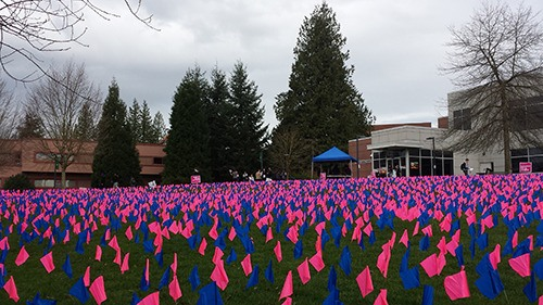 Pink and blue flags were planted in UFV's lawn on Monday morning, as part of an anti-abortion protest.