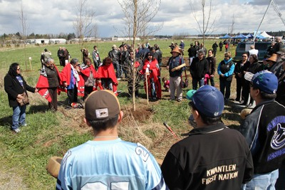 A large contingent from the Kwantlen First Nation attended Sunday's Arbour Day events at the Derek Doubleday Arboretum, to honour Kwantlen elder George Antone. The longtime resident of the Kwantlen lands on McMillan Island was found dead on his home on March 7, the apparent victim of a homicide which remains under investigation. The Township honoured his service to his people and the community with a tree planted in his memory. Several other notable Langley residents who passed away in the past year were also honoured with tree plantings.