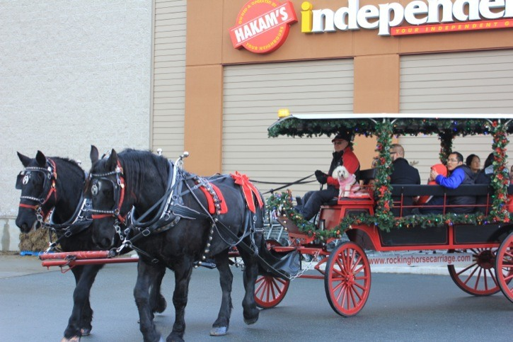 Horse and carriage rides were among the features of the first Willoughby Town Centre Christmas festival on Saturday.