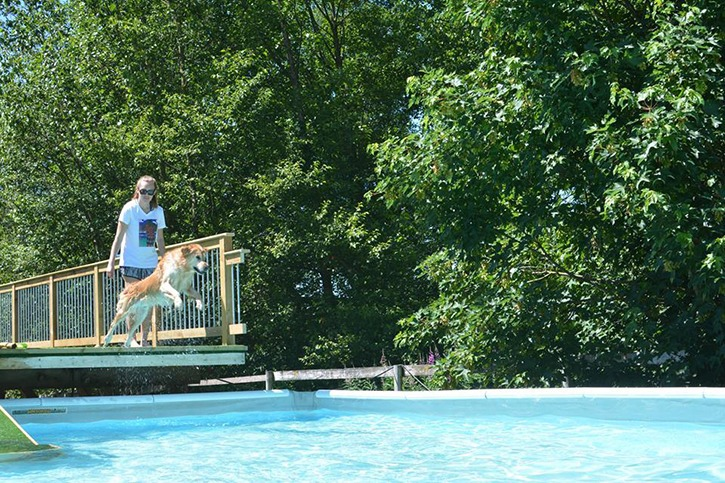 Aldergrove animal trainer Bonnie Judd has opened her swimming pool for both pet owners and their dogs.
