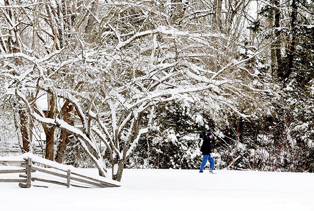 A man strolls through snowy Campbell Valley Park in south Langley on Monday. The white stuff has blanketed Langley and the rest of the Fraser Valley this week.