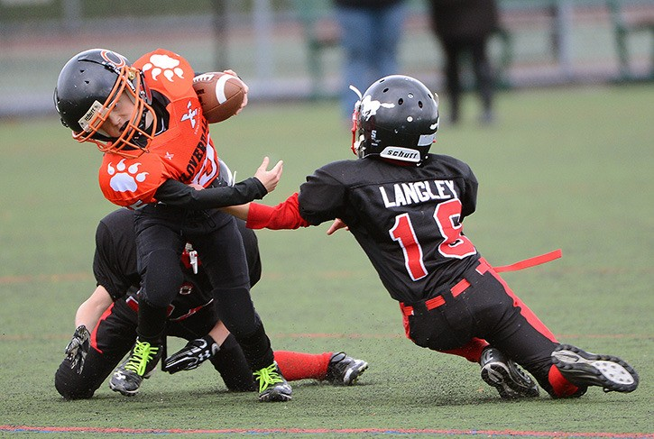 Langley Broncos Ethan Nugent (bottom left) and Dilano Cowx (right) work to bring down Jasper Harvie of the Cloverdale Tigers during an atom-division Vancouver Mainland Football League game at Cloverdale Athletic Park on Sunday.