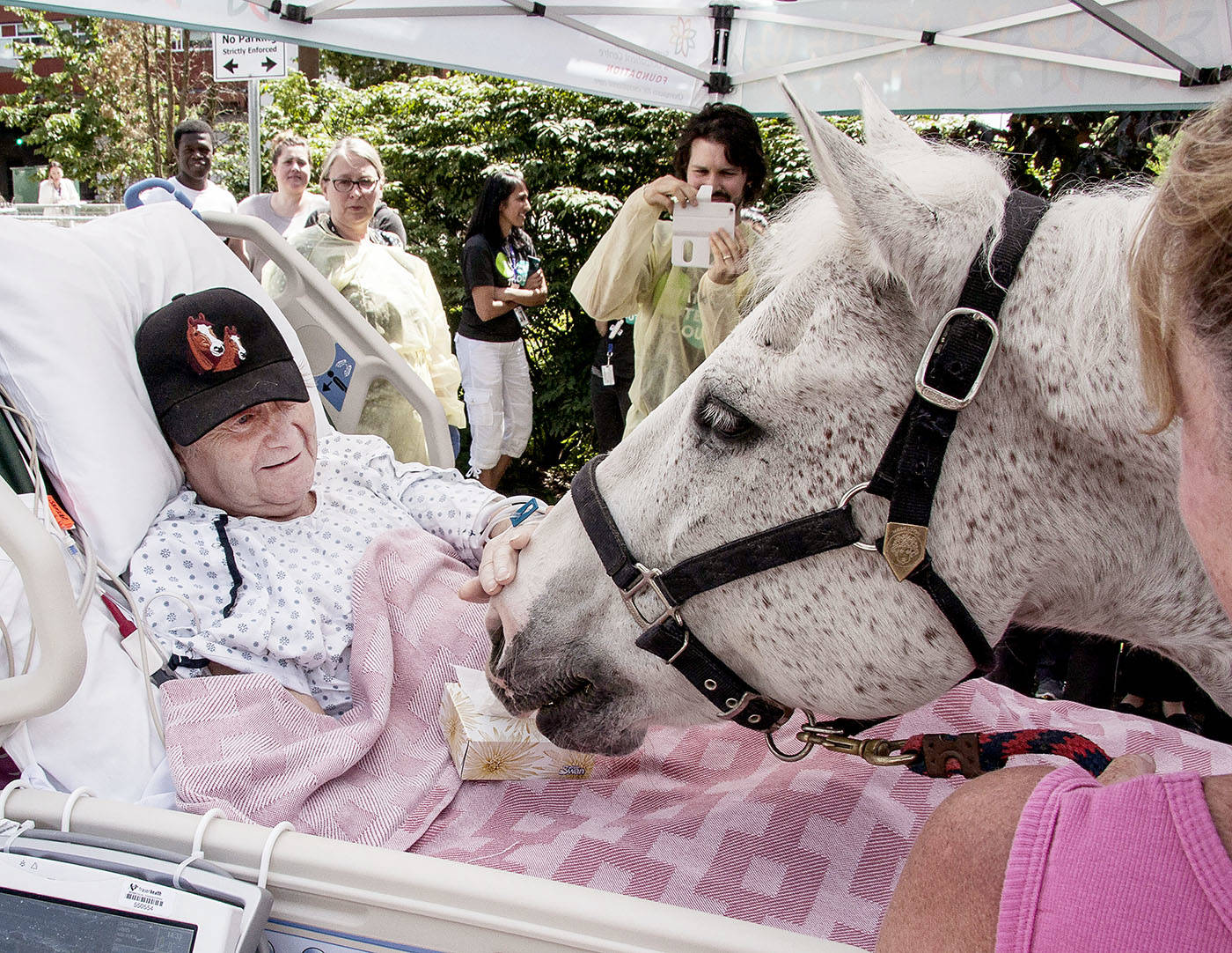 Jim Clarkson has been a patient at Surrey Memorial Hospital for the past five months. On Tuesday, he received a surprise visit from a pair of Pacific Riding for Developing Abilities' therapeutic horses, including 14-year-old Dodger. Jim had volunteered at PRDA for more than 20 years.                                Rick Gammer photo