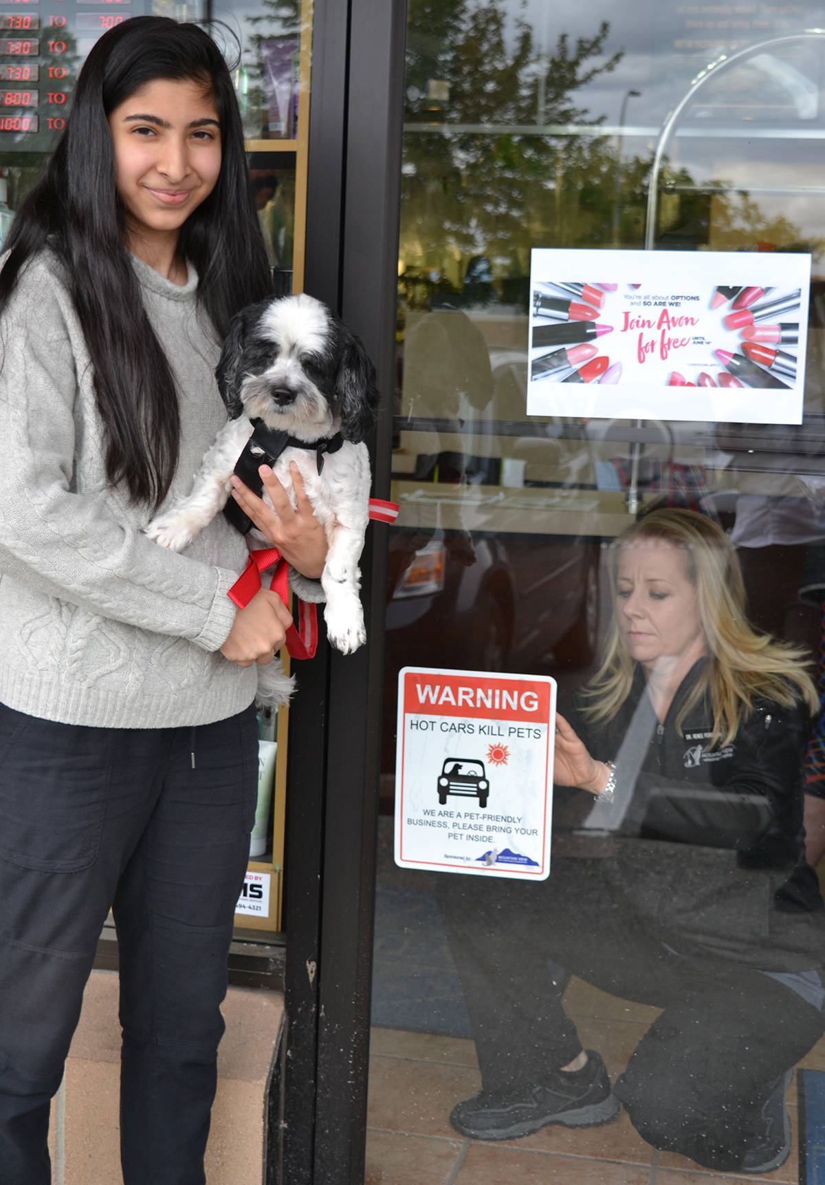 Langley vet launches campaign to keep pets cool this summer