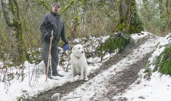 James Moran stands next to a gouged-out trail in Williams Park in December. The damage was caused by ATVs. It appears ATVs were back joyriding the park over the weekend.