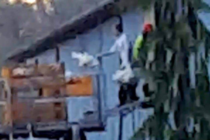 A video released by the group Animal Justice claims that workers at an Abbotsford facility were abusing chickens.