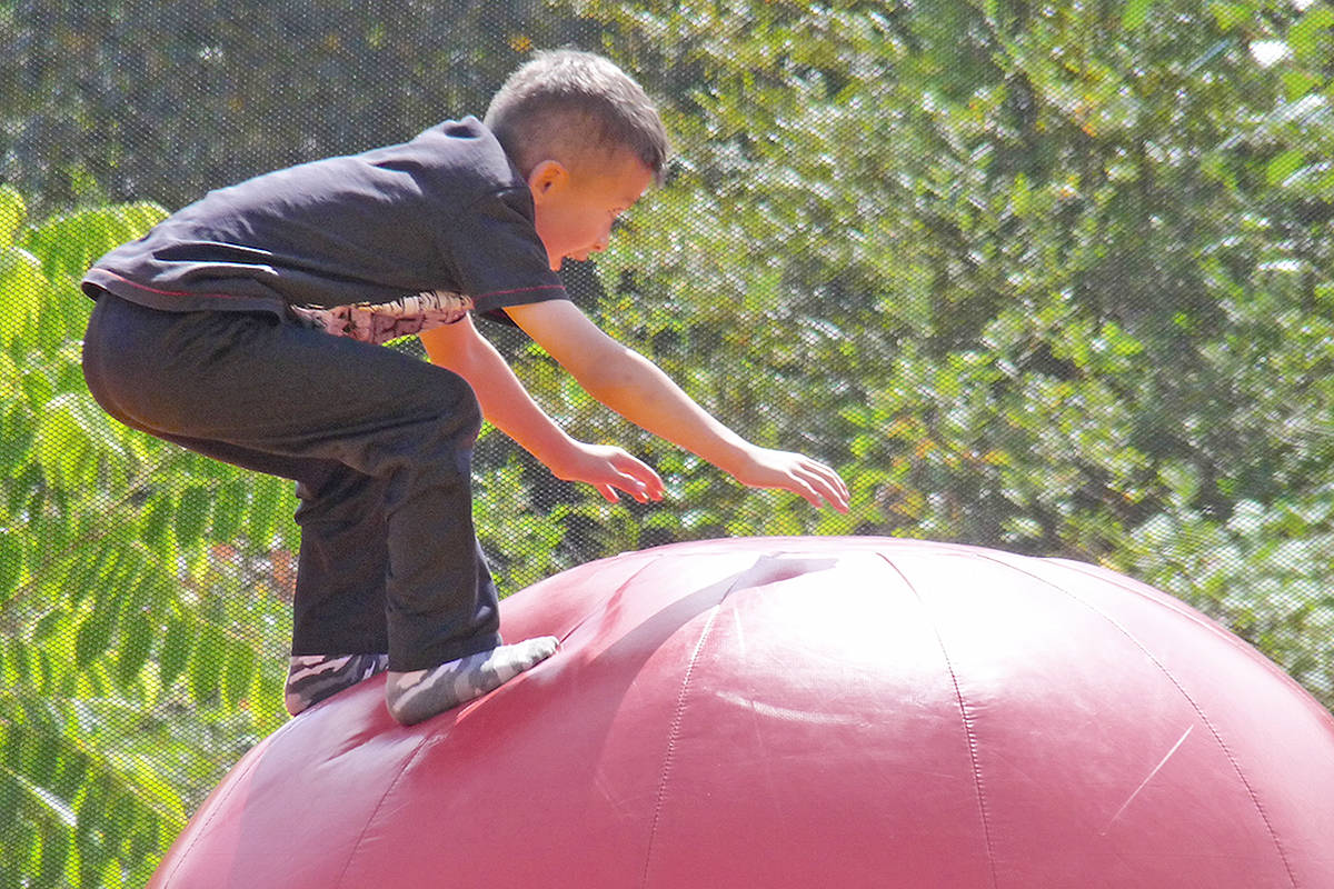 Winston Fell … didn't. The six-year-old from Coquitlam made it look easy as he navigated the inflatable obstacle course at the Greater Vancouver Zoo's 47th anniversary celebration in Aldergrove. Dan Ferguson Langley Times