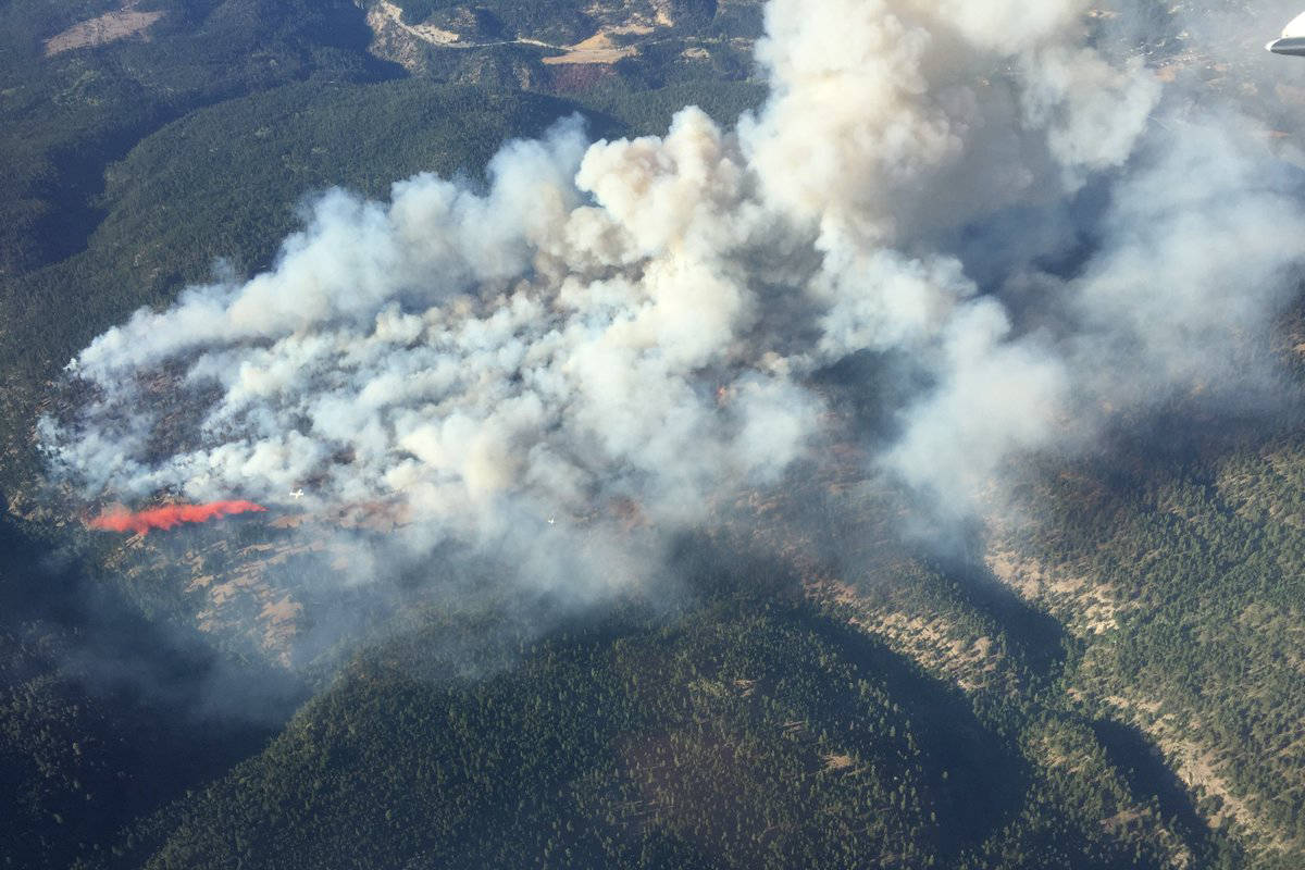 UPDATED: Peachland wildfire now at 100 hectares
