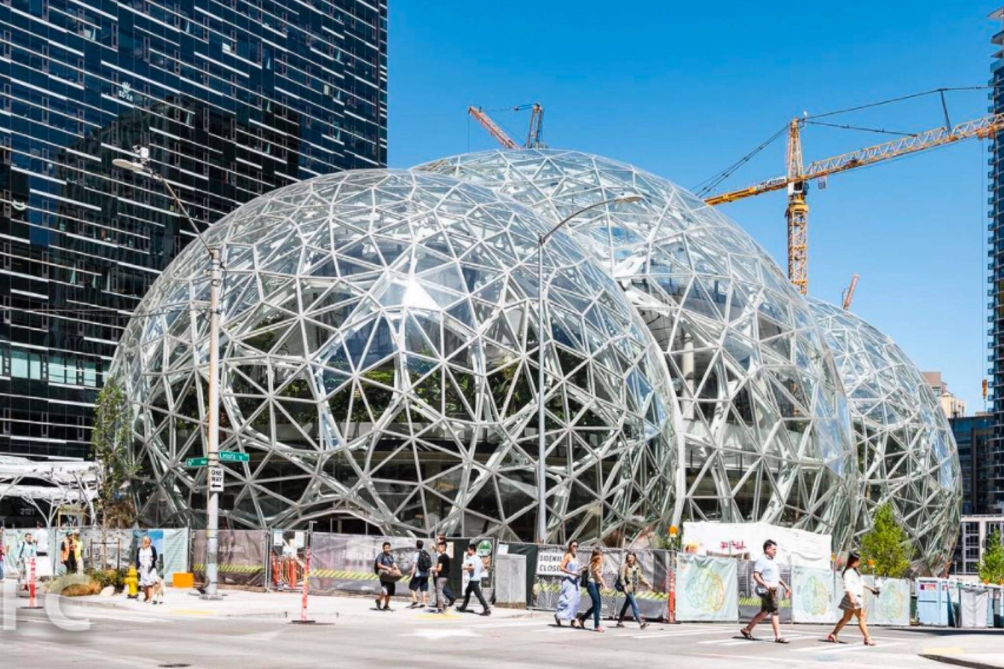 The Spheres at the Amazon campus in Seattle (Instagram – @field_condition)