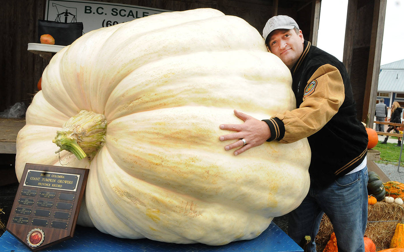 Scott Carley gave his B.C. record-setting pumpkin a big hug Saturday at Krause Berry Farms.                                Troy Landreville  Langley Times