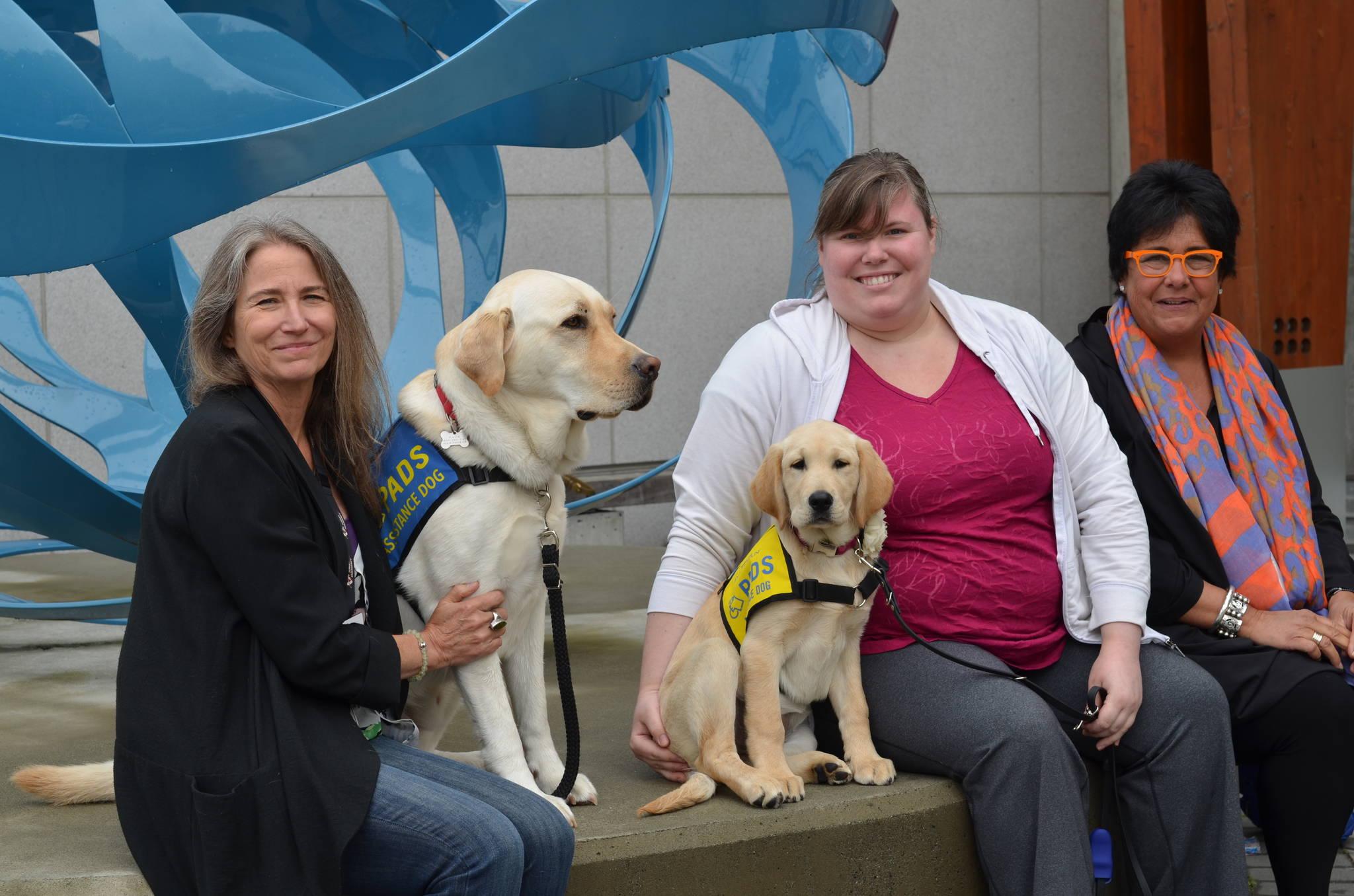 Fraser Health introduces first hospital 'trauma dog' in B.C.