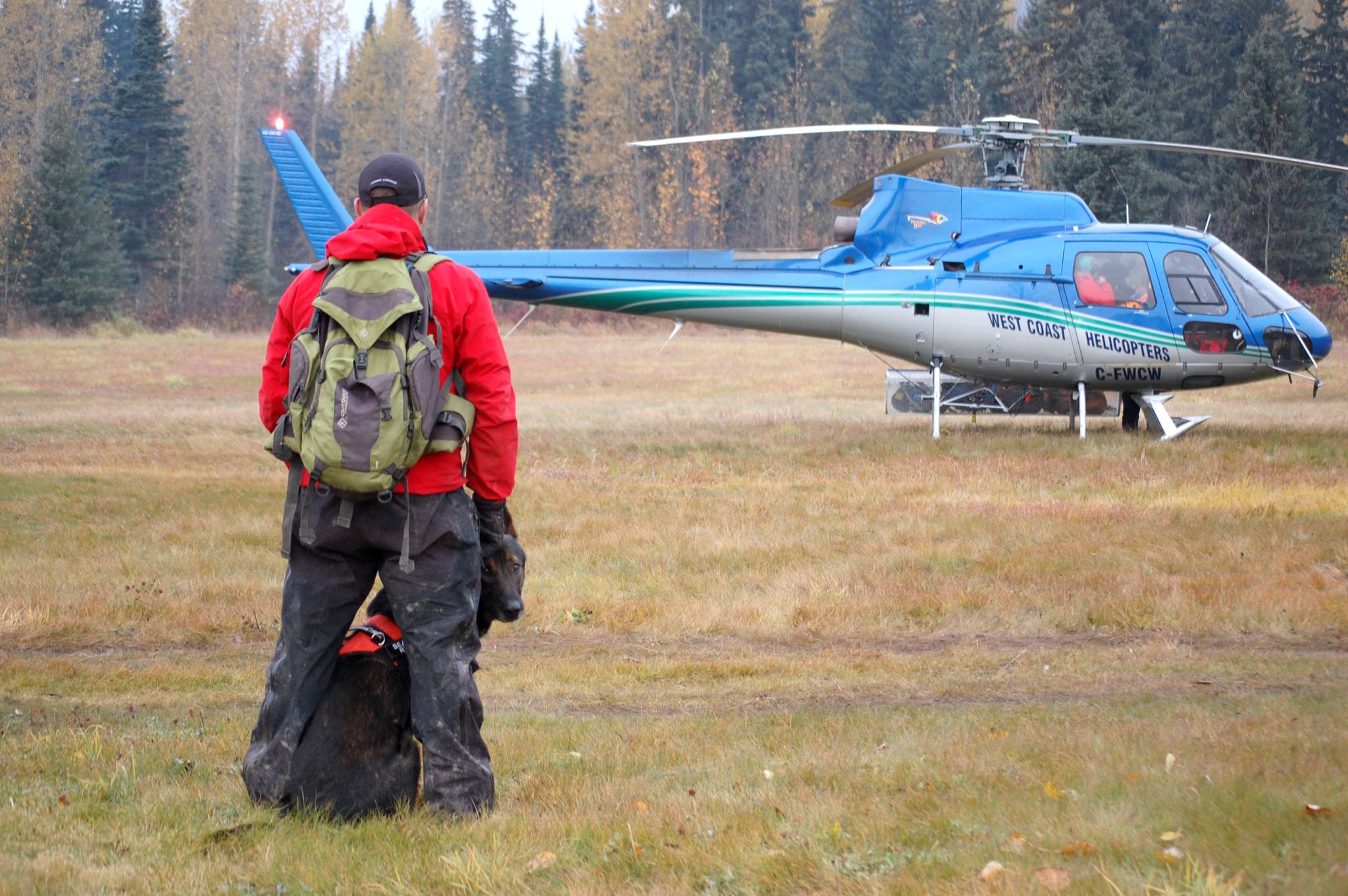 A search dog and his handler from Williams Lake wait for their ride into the bush to help look for Frances Brown. (Marisca Bakker photo)