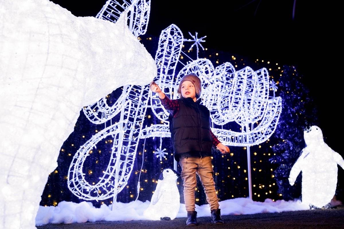 Langley greenhouse plans massive indoor Christmas light show