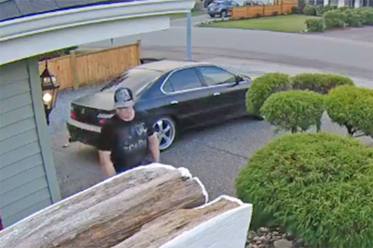 VIDEO: Camera records brazen daylight theft of parcel