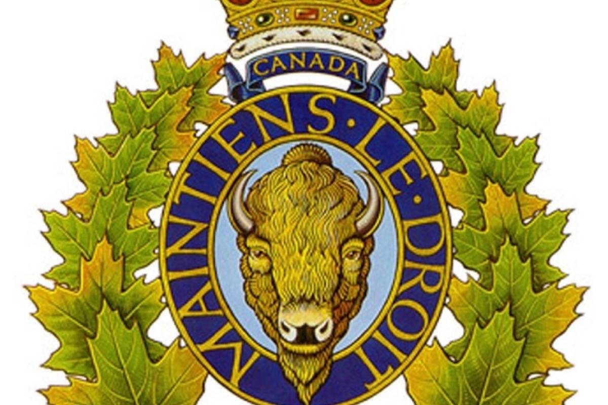 Langley woman accused of taking Township vehicle, attempted arson