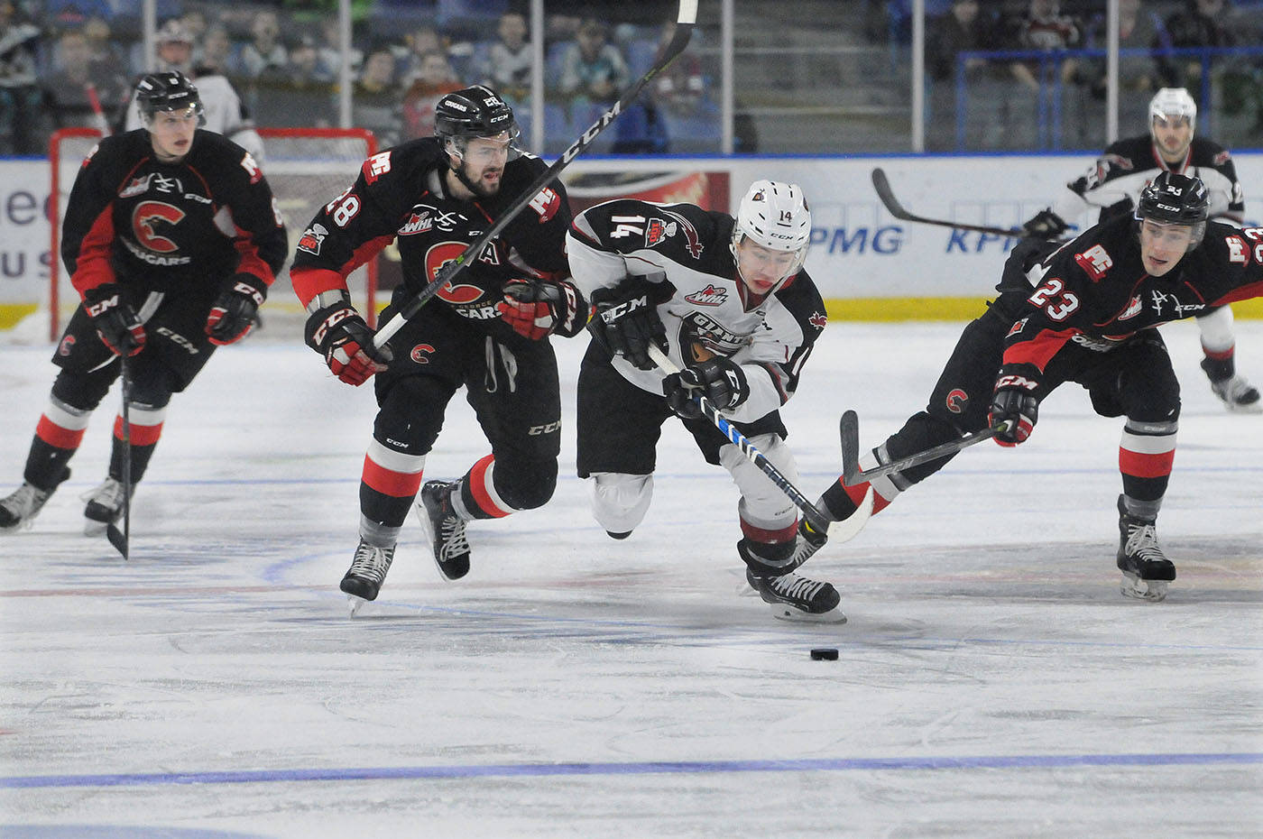 VIDEO: Prince George Cougars edge Vancouver Giants 7-6 in OT in wild affair