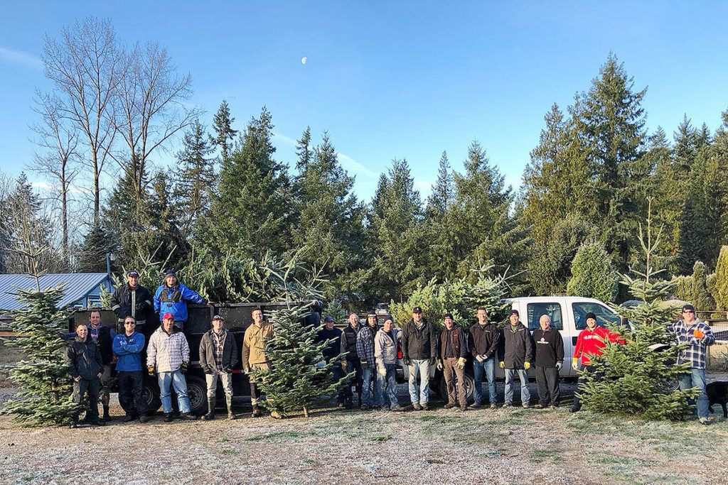 Langley Firefighters Harvest Christmas Trees For Charity