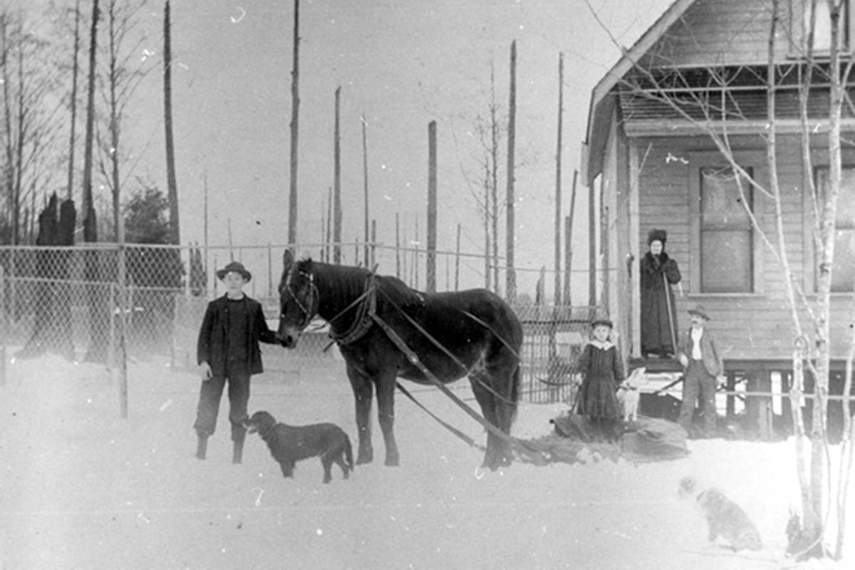"""C. Naganulius' house on Old Yale Road in 1912. Shown are Grandma Edwards, A.W. Holland and the horse """"Old George,"""" R. Holland, Forlence M., and dogs Flossie and Bob. (Courtesy City of Surrey Archives / 170E19)"""