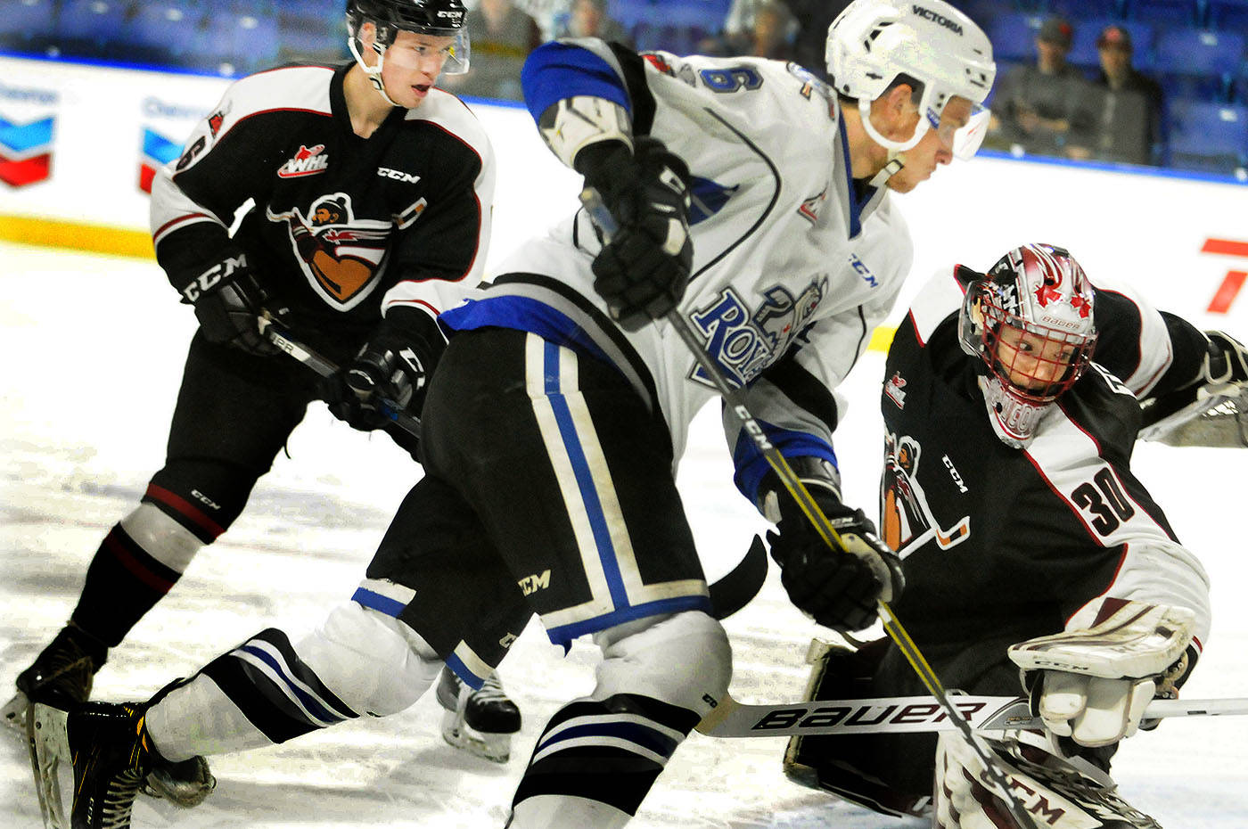 Vancouver Giants goaltender David Tendeck made 21 saves on Friday night in his team's 3-1 win over the visiting Victoria Royals. Tendeck followed that up with a 40-save shutout performance on Sunday over Prince George. On Monday, Tendeck was named the Western Hockey League's goalie of the week.                                 Troy Landreville Langley Times