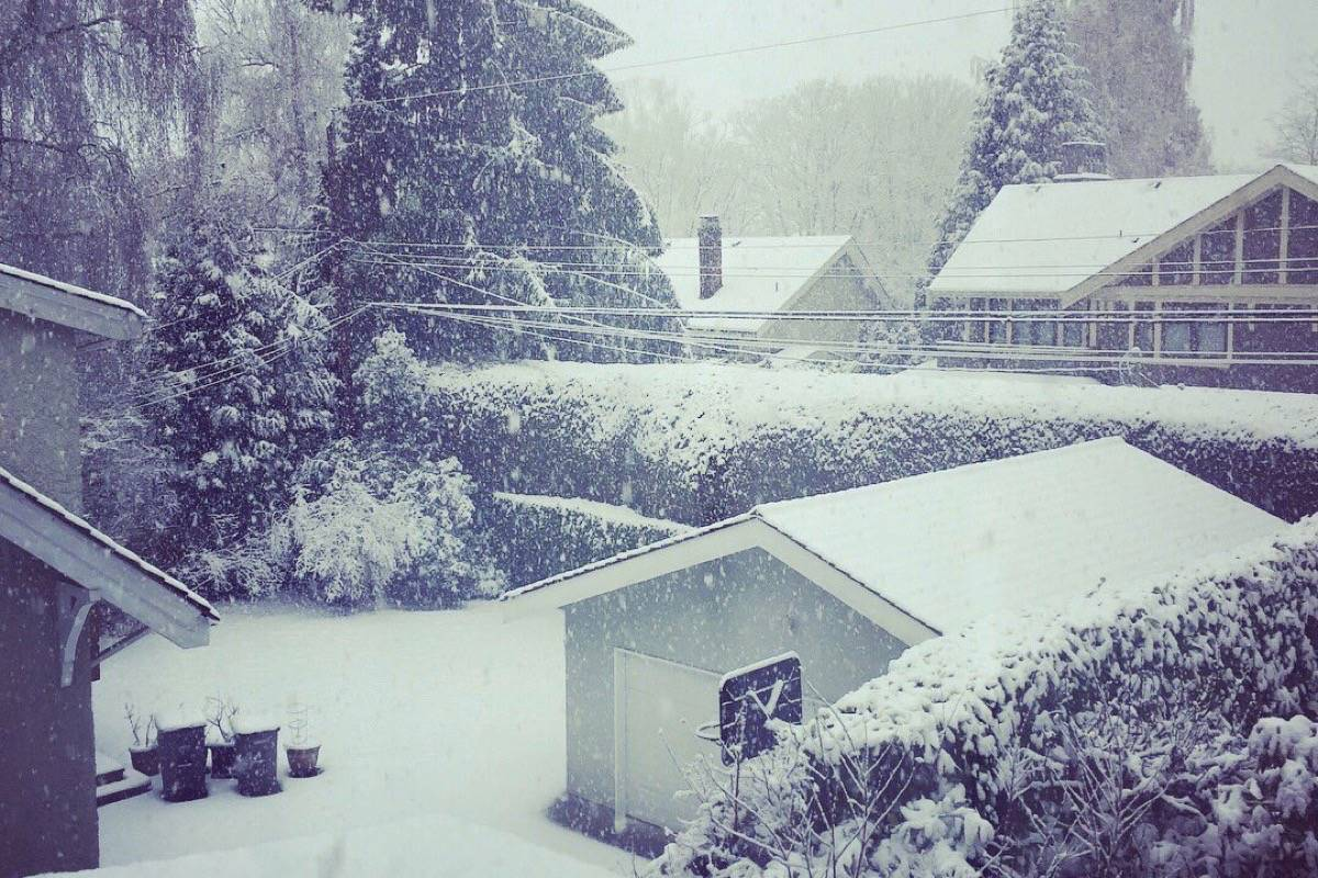 Snow covers roofs and lawns in Vancouver Tuesday. (David Kuo/Twitter)
