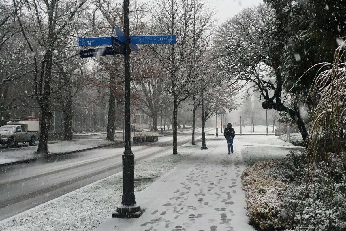 Lower Mainland braces for winter storms, freezing rain
