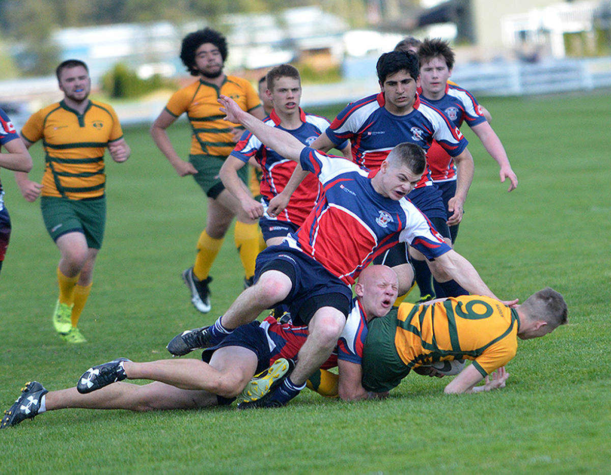 Langley Saints' Nathan Warren is taken down by Brookswood Bobcats' Caleb Gerth (bottom) and Liam Briggs during senior boys rugby at Langley Secondary last week (April 27). The Saints hung on for the 19-12 victory. Gary Ahuja Langley Times