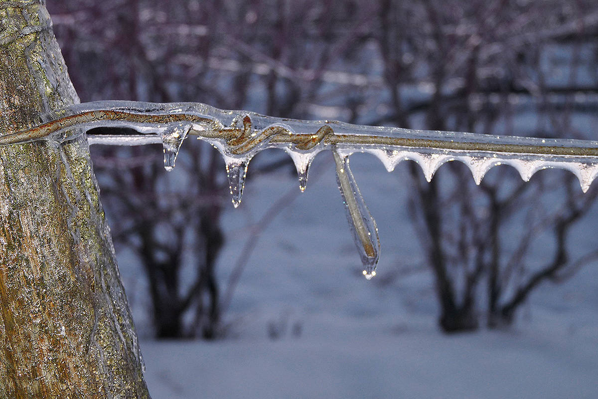 UPDATE: Power back on in Aldergrove after being pummeled by ice storms