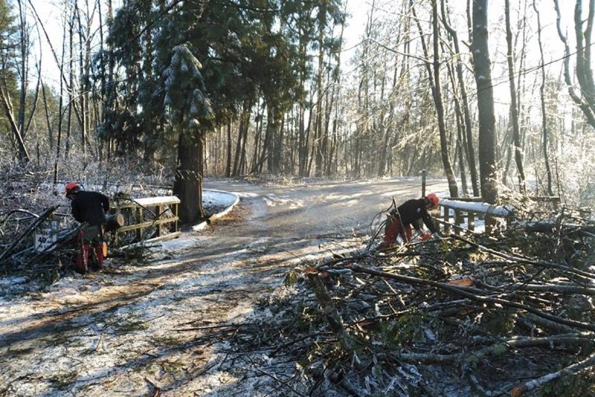 Aldergrove Regional Park remains closed from ice storms