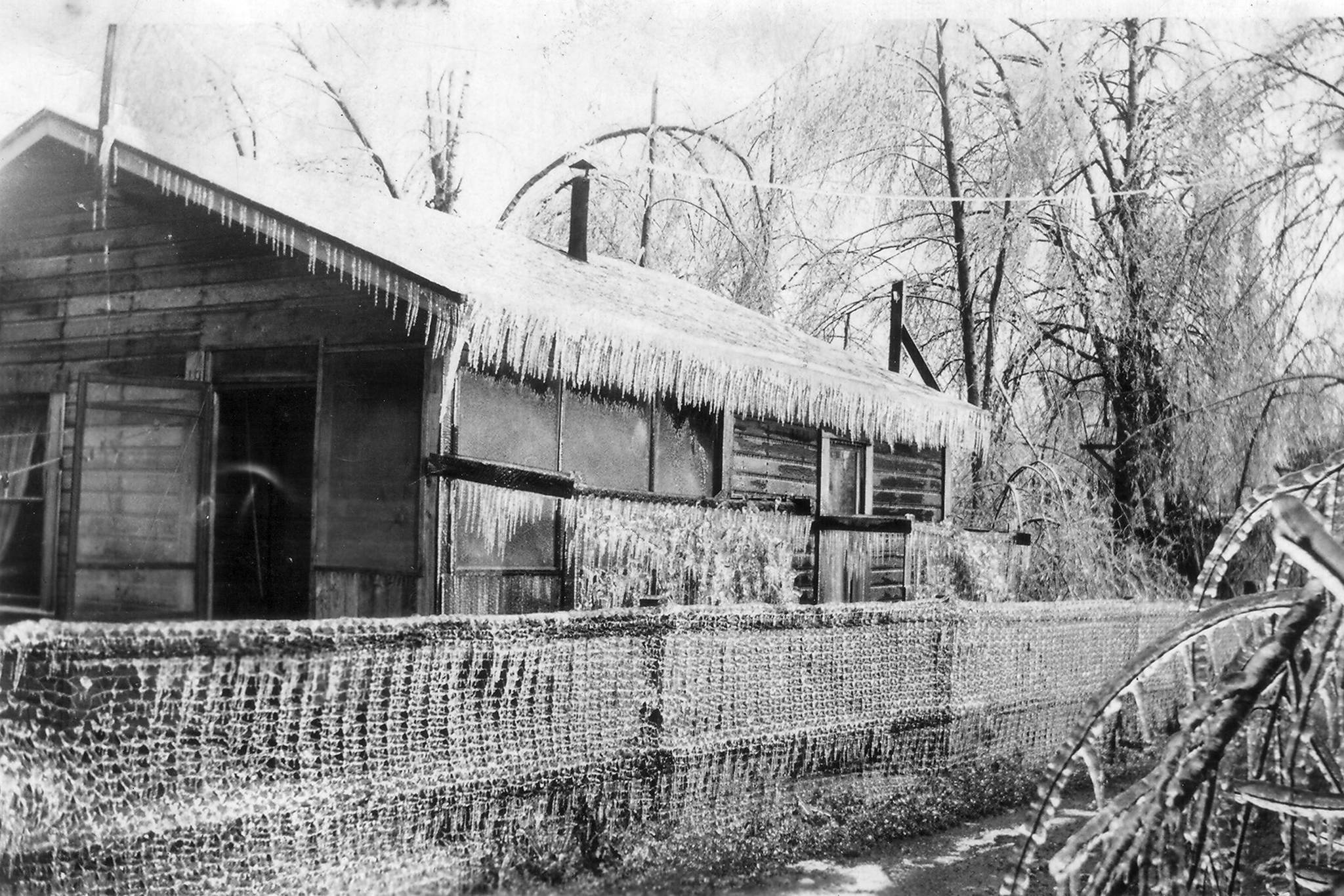 Pictures show how the ice storm of 1935 paralyzed the Fraser Valley