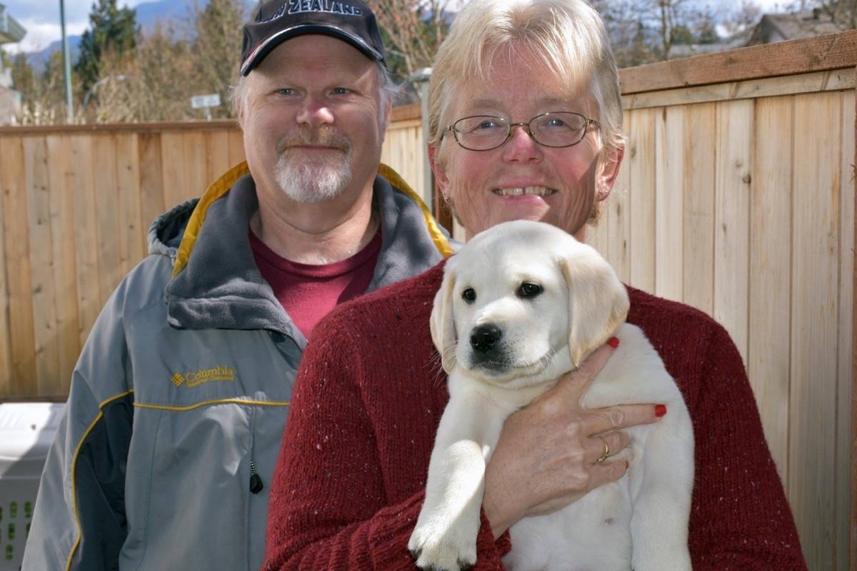 Service dogs in search of homes – Langley Advance Times