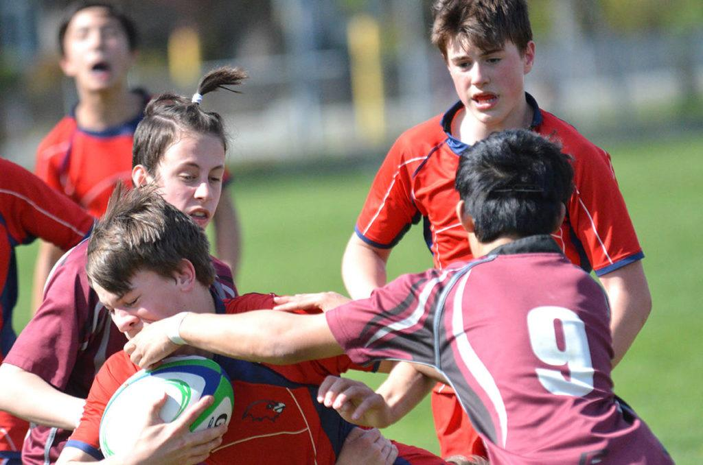 Stafford Skyhawks vs Poppy Redhawks, Grade 8 rugby at DW Poppy Secondary, April 24 Poppy won 34-7 Gary Ahuja Langley Times